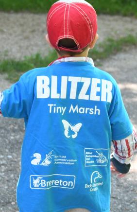 Tiny Marsh Bioblitz t-shirt