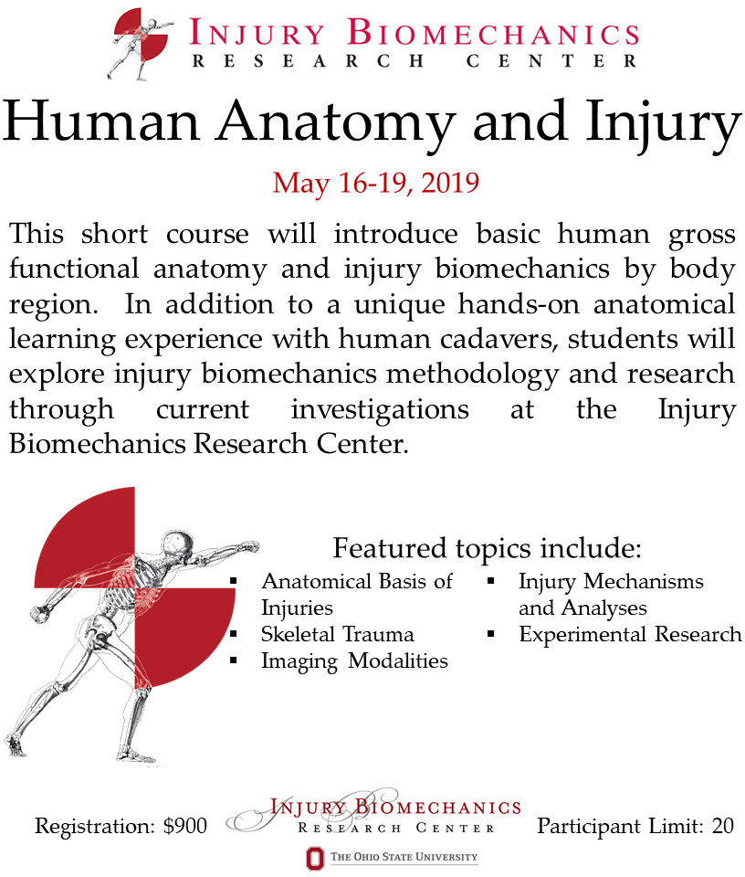 Human Anatomy And Injury Short Course 2019 Registration Thu May 16