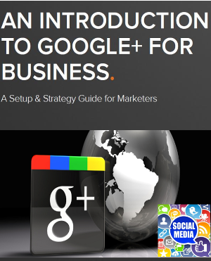 Free Ebook Google+ For Business