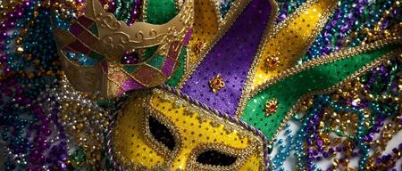 Mardi Gras Party Buses 2013