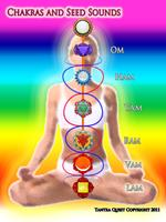 Tantric Chakra Therapist Program with Shawn Roop (San Diego)
