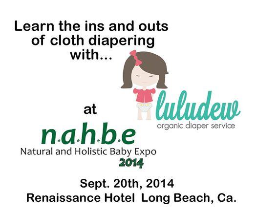 luludew organic diaper service cloth diaper 101