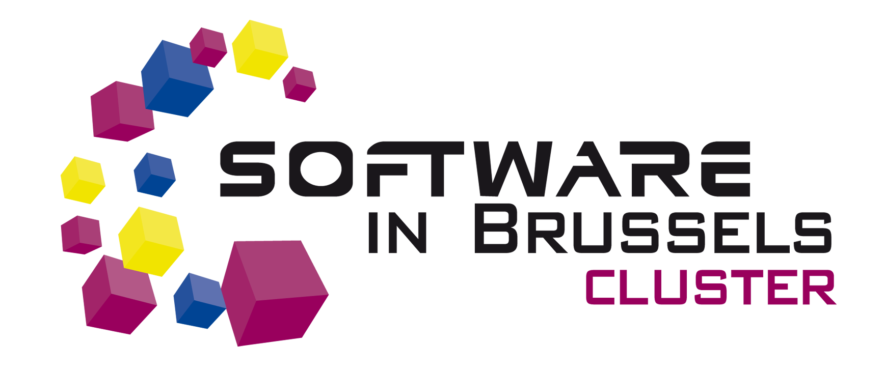 Software in Brussels