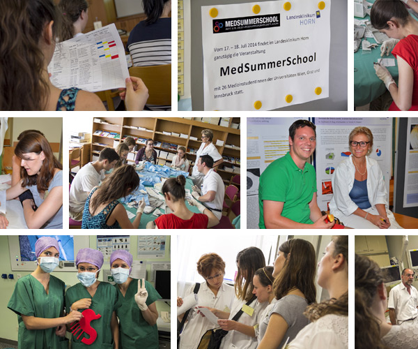 Collage MedSummerSchool 2016