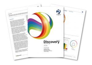 Insights Discovery profiel