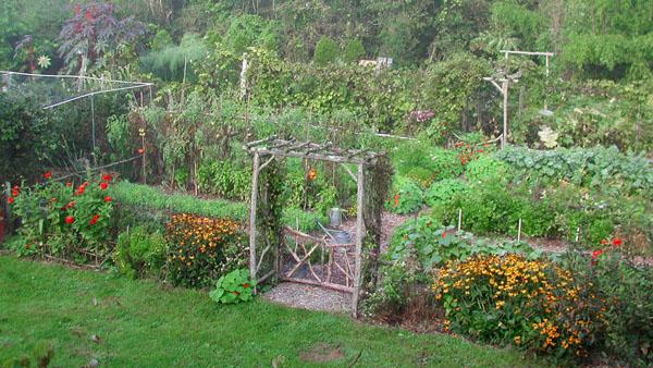 Lee Reich garden