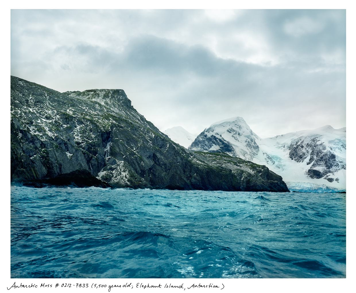 from Rachel Sussman's The Oldest Living Things in the World - Antarctica