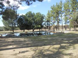 Dedication of the Land -- Taylor Ranch, future site of the...
