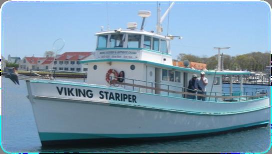 Viking Stariper