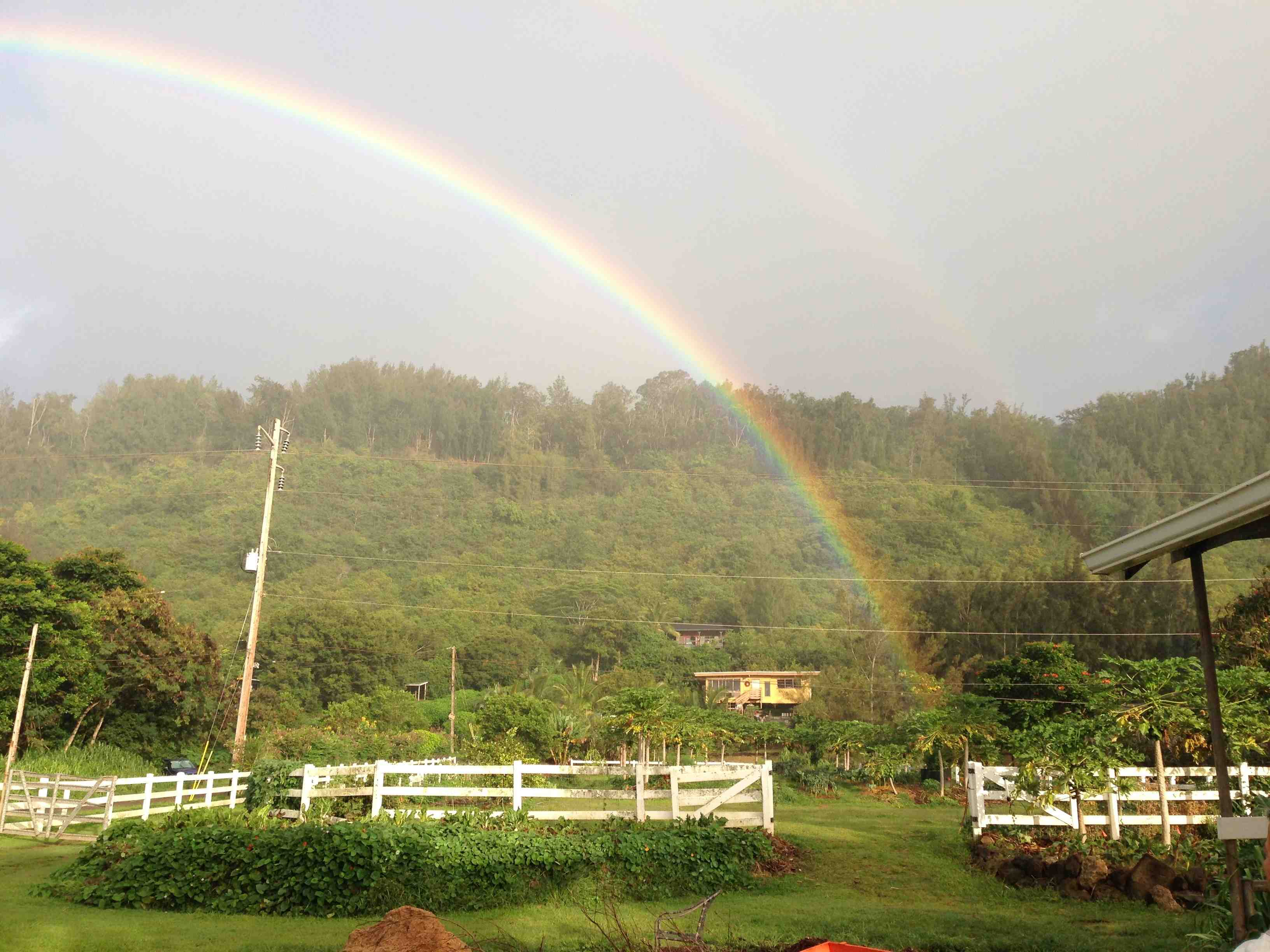 Double Rainbow at Waihuena Farm