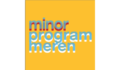 Minor Programmeren