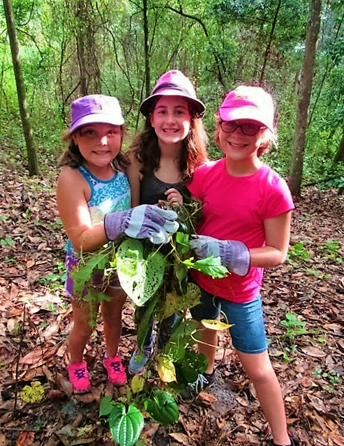 Girl Scouts Helping Ravine Gardens