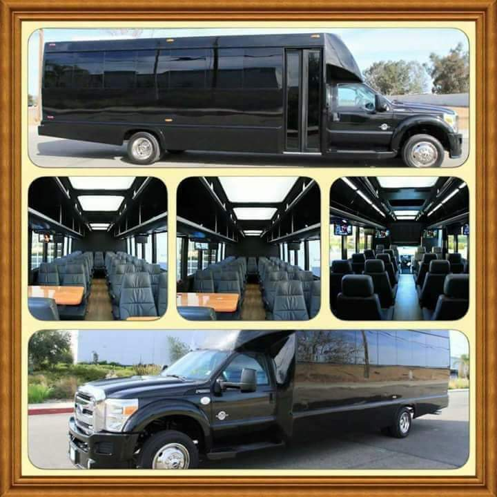 Our Luxury Party Brunch Bus!