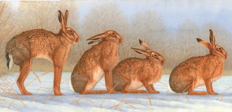 Hares in Snow, painted by Robert E Fuller