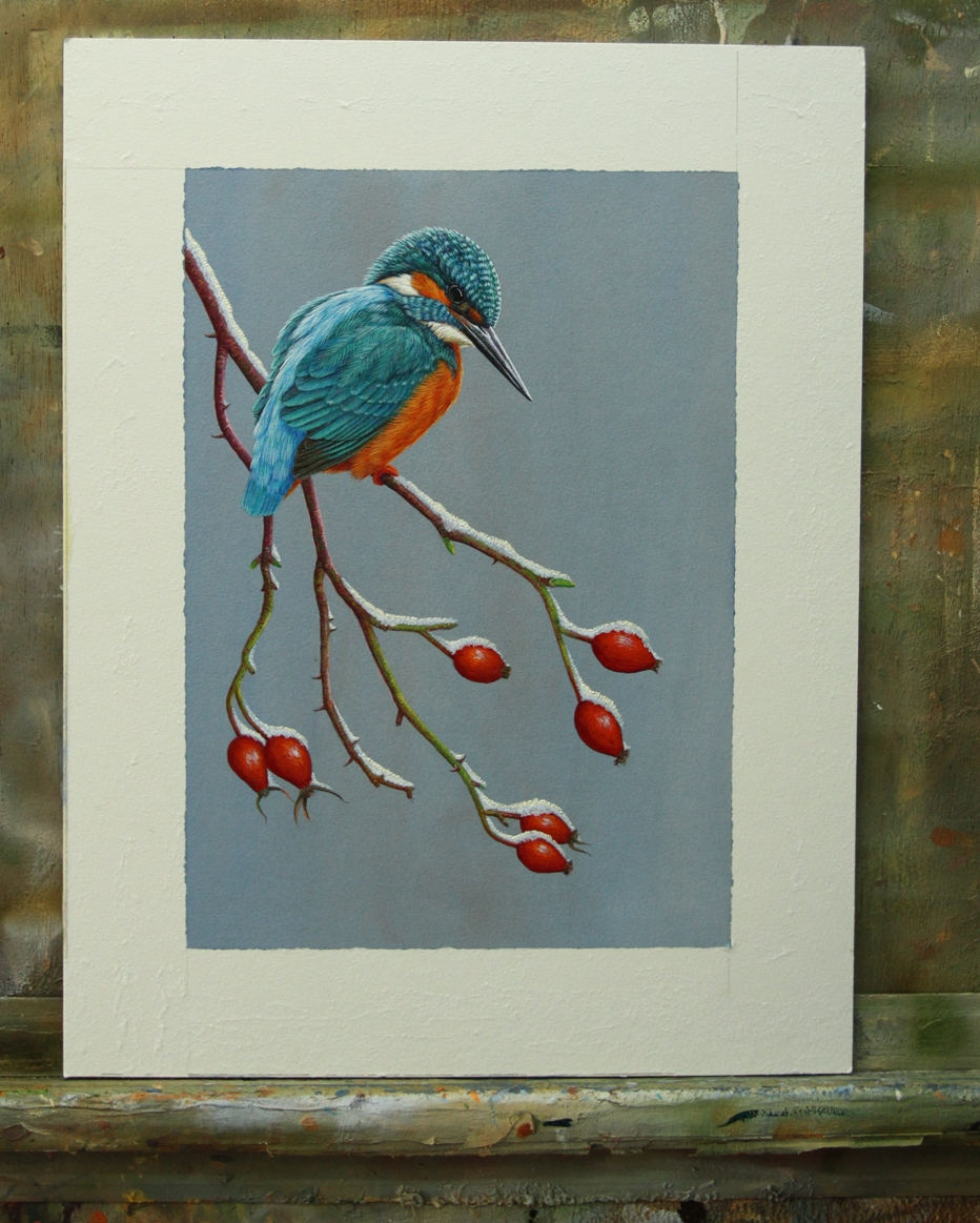 Kingfisher on Frosted Branch, painted by Robert E Fuller