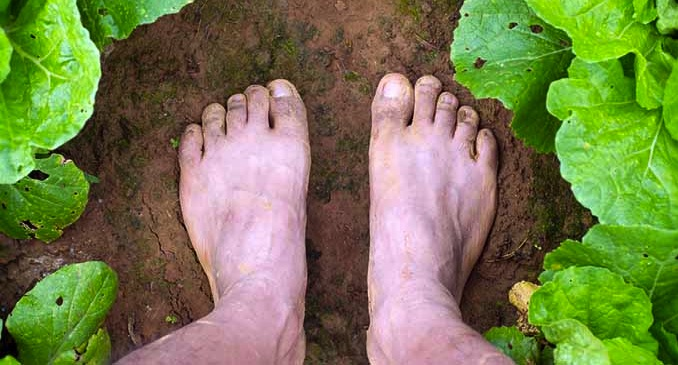 bare feet in soil