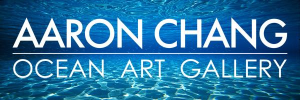 Aaron Chang Ocean Art Gallery