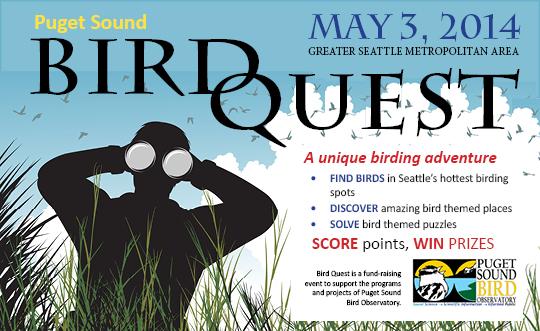 low res bird quest logo