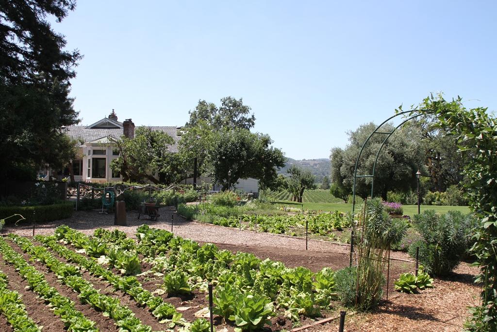 Wetzel Family Garden
