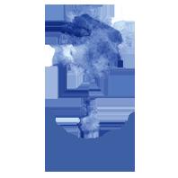 Blues for the Bush Logo