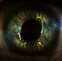 Image of the eye taken from the installation