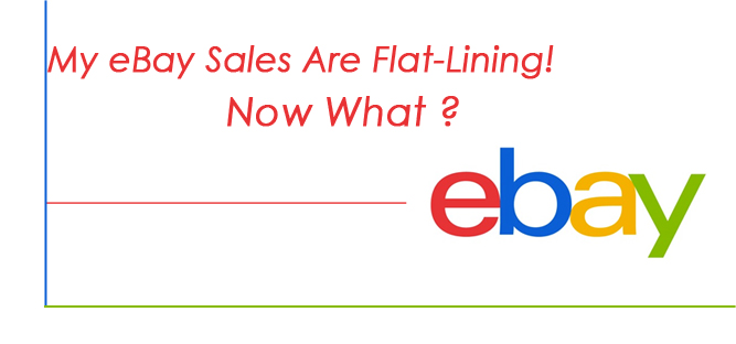 My eBay Sales is Flat Lining ! Now What ?