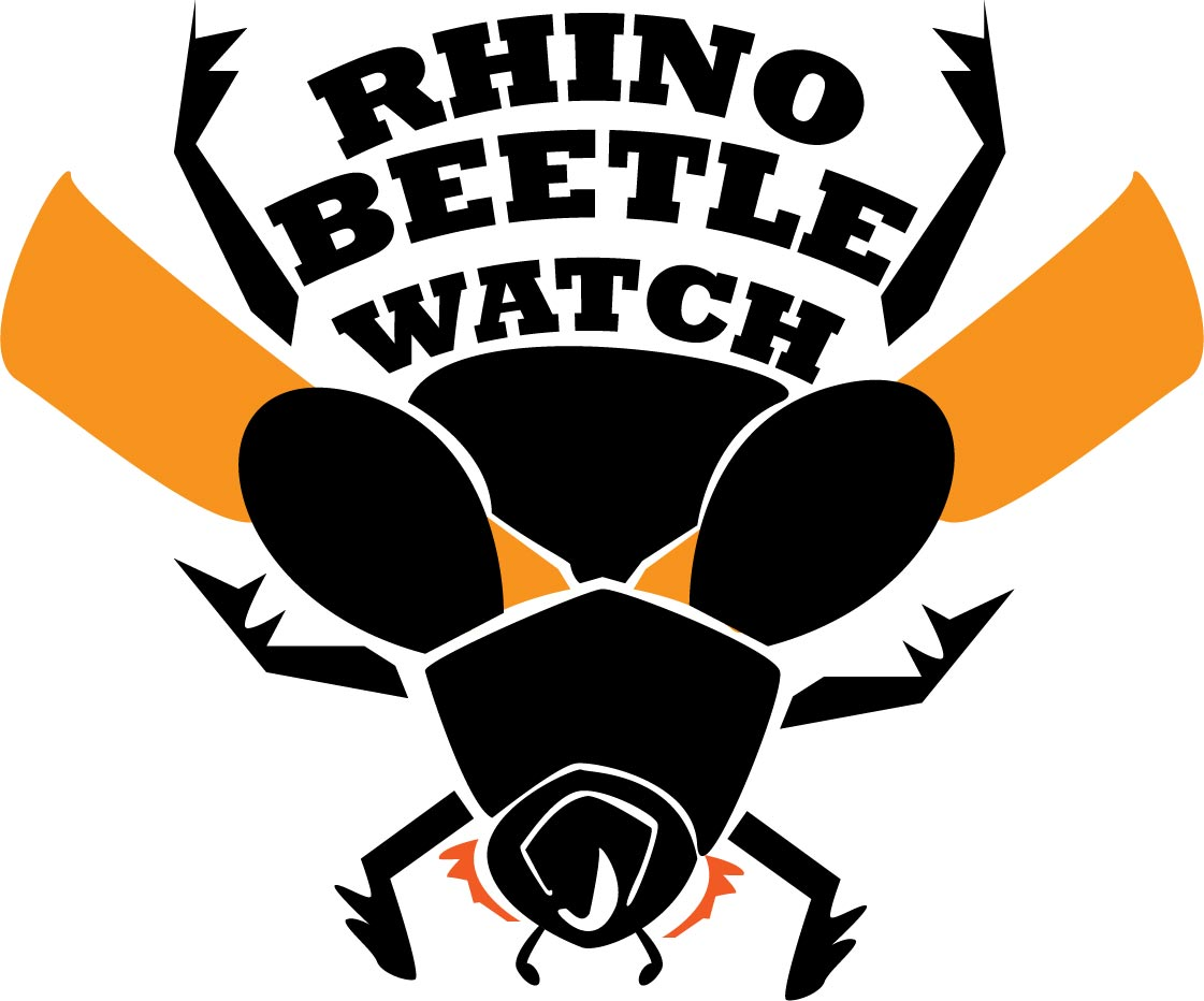 Rhino Beetle Watch logo