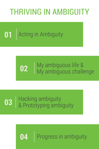 Thriving in Ambiguity Session Plan