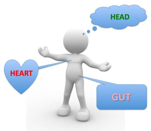 image of figure with Head, Heart and Gut brains