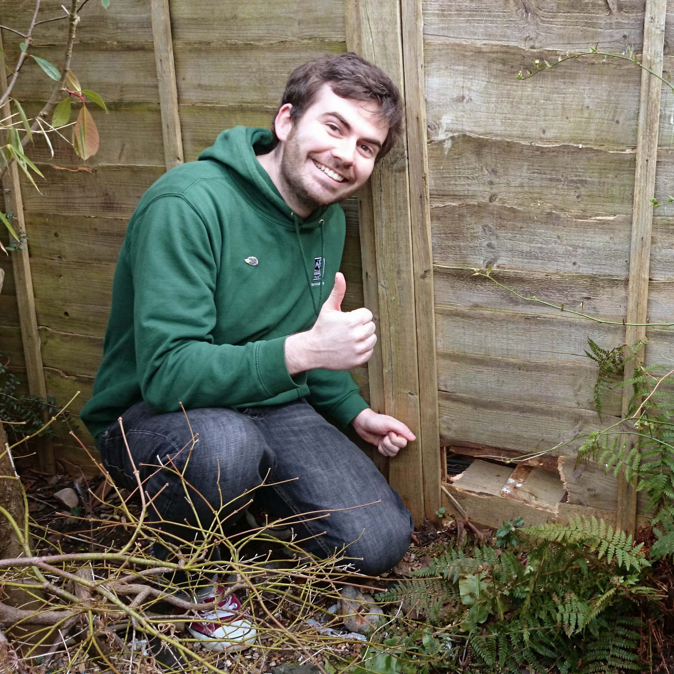 Simon Thompson runs the first hedgehog conservation zone in the UK