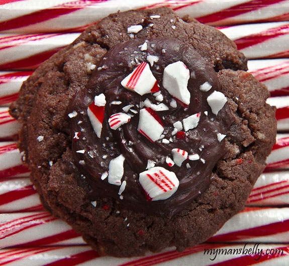 Christmas cookie exchange for women first story casa for Simple christmas cookie and candy recipes