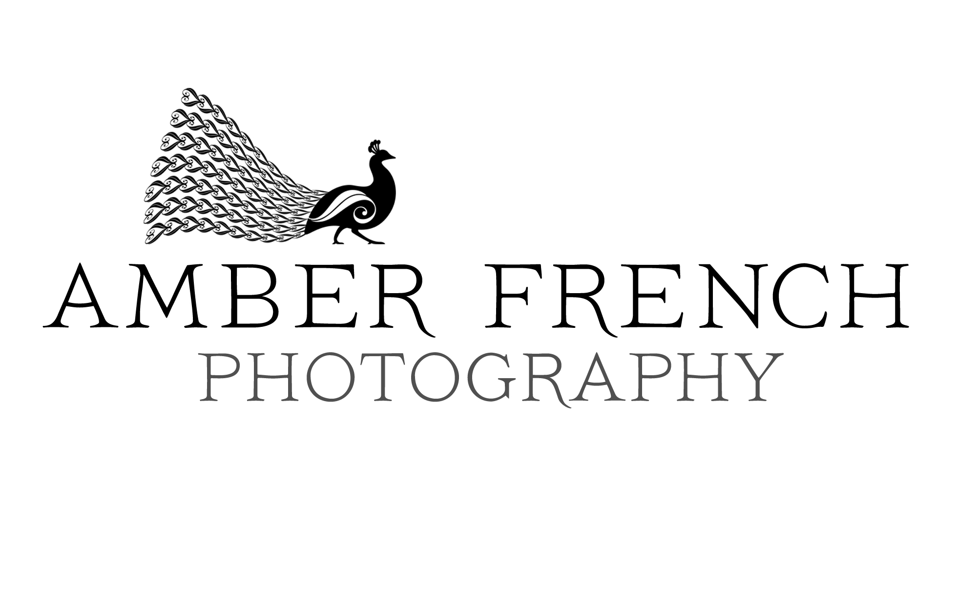 Amber French Photography