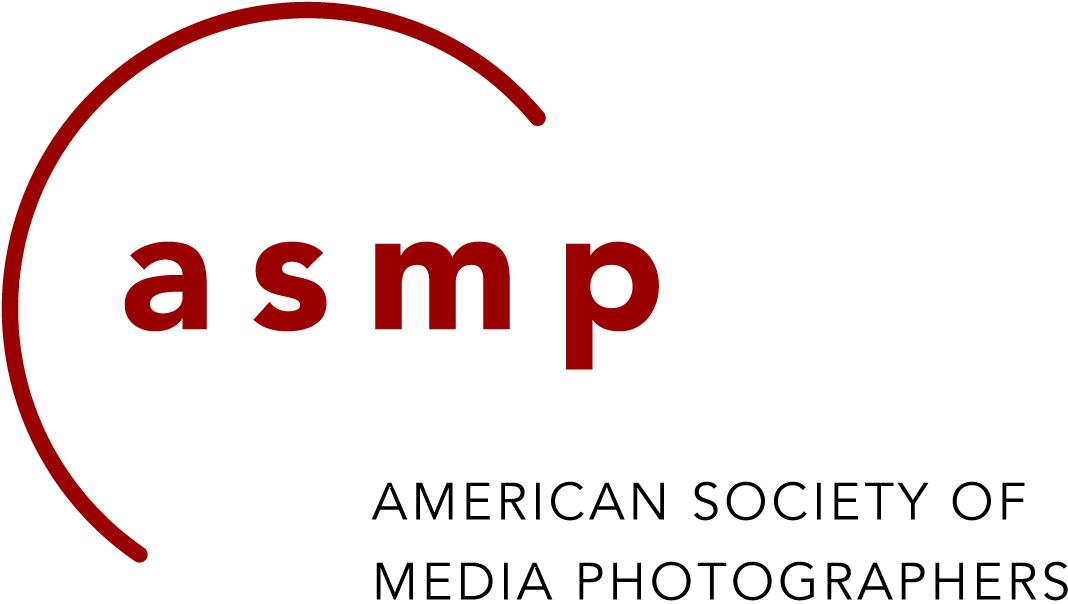 ASMP logo