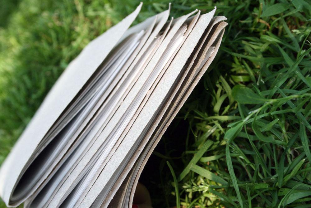 A book in grass