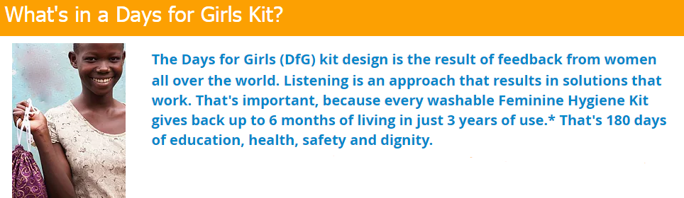 What's in a Days For Girls Kit?