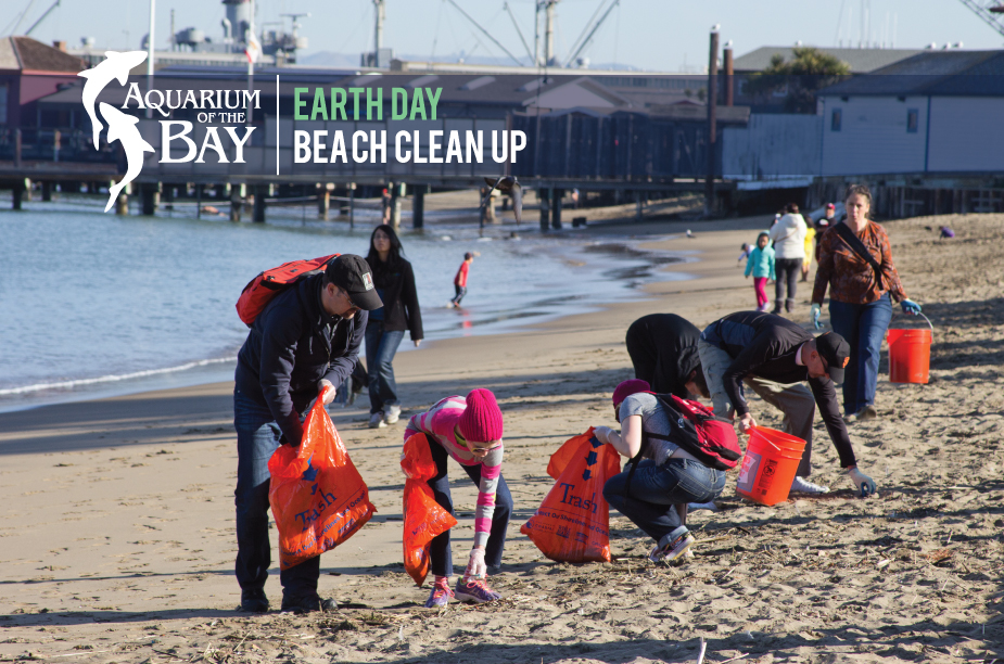 People Cleaning The Beach People Cleaning Aquatic Park Every Day is Earth Day at Aquarium of The Bay