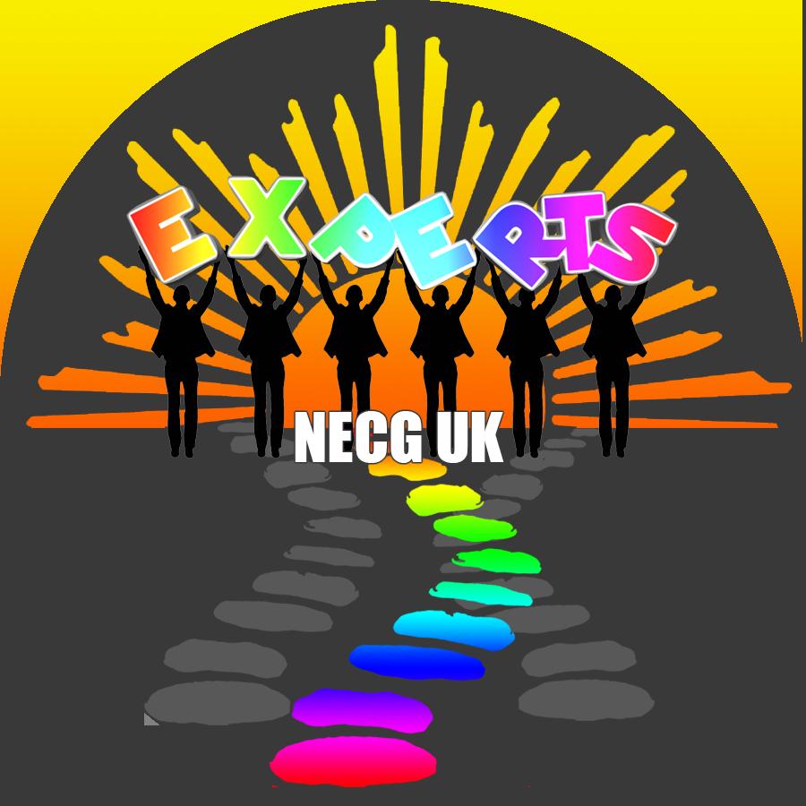 NECG Conf logo