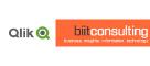 Qlik | BIIT Consulting