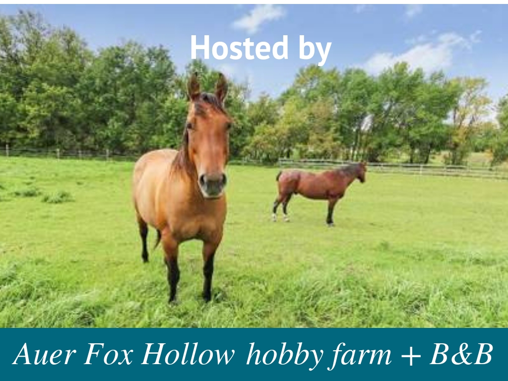 Hosted by Auer Fox Hollow hobby farm and B&B