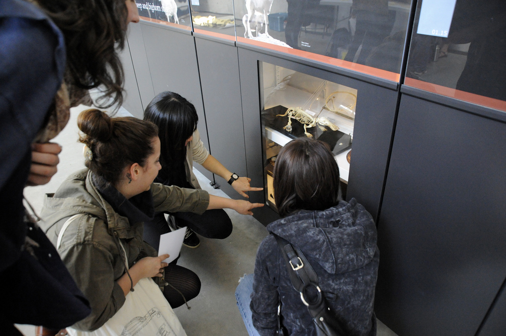 High School students looking at a cabinet.