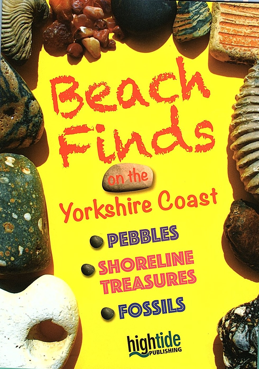 Beach Finds Guide
