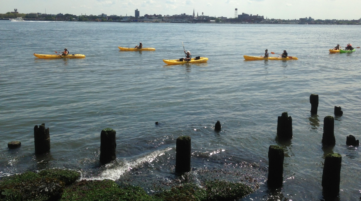view of kayakers