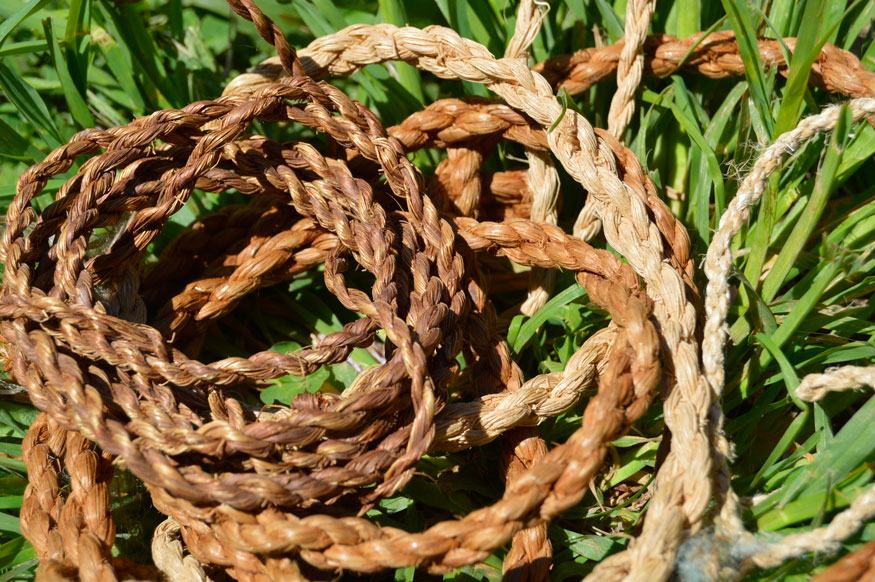 rope made from plants