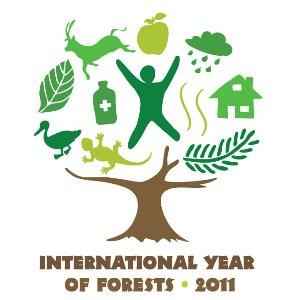 IYF Film Festival logo