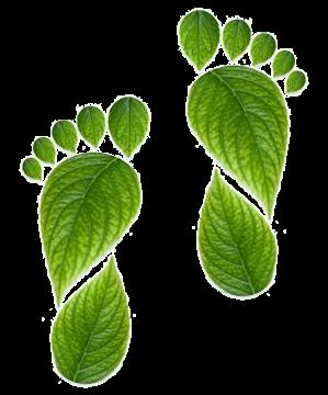 green footprint natural cleaning