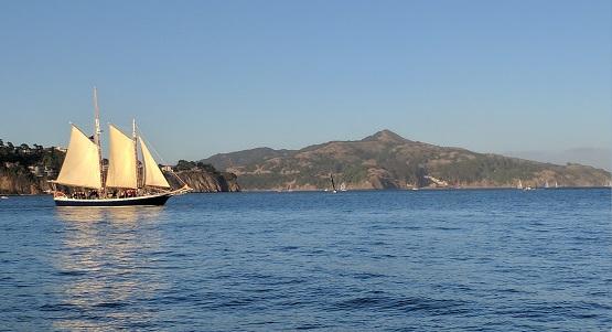 Sunday Morning Eco-Sail on San Francisco Bay