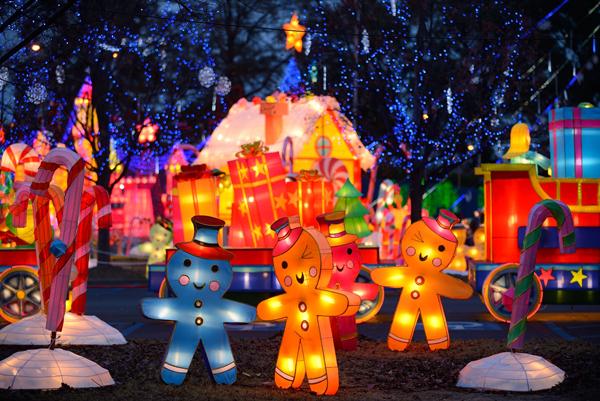 biggest Christmas Lights limo tour in Sacramento