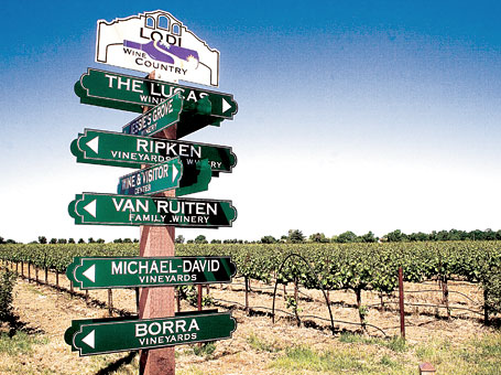 Lodi-wine-tasting-tour