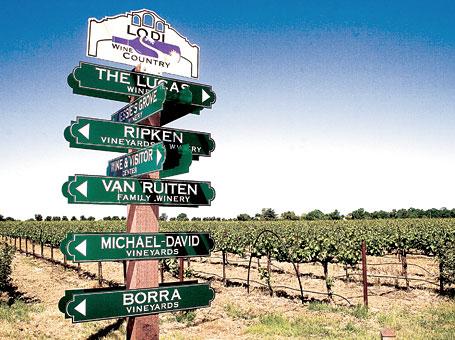 Lodi-wine-tasting-tour