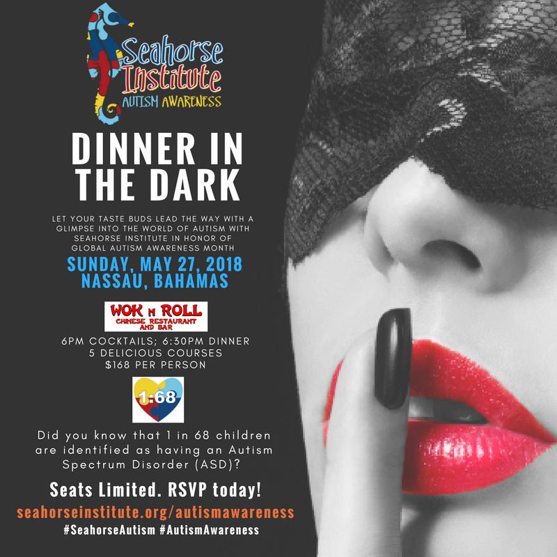 Seahorse Institute Dinner in the Dark Experience